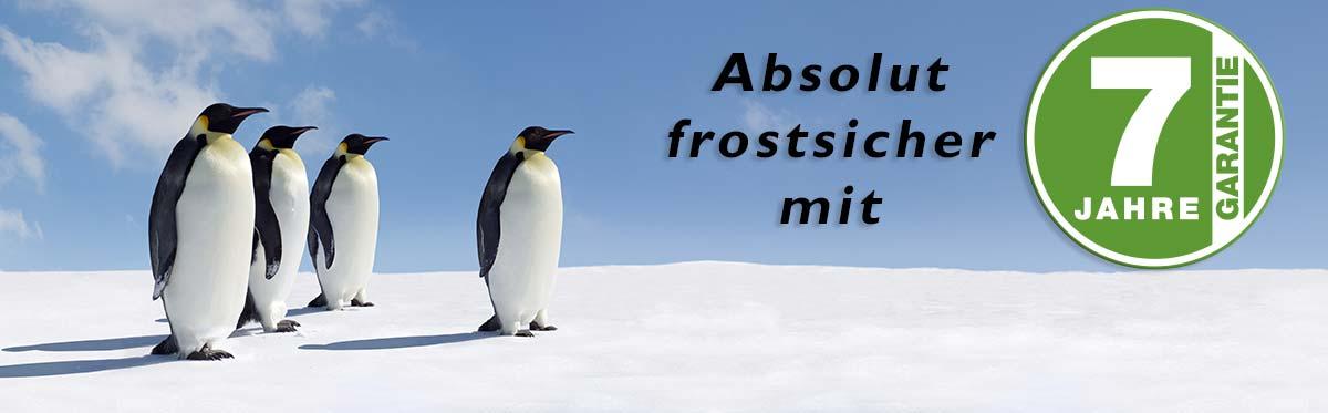 Frostfest_garantie_pinguine